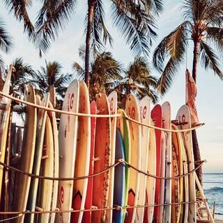 Już tęsknimy za lipcowymi upałami 😥 Uciekacie w ciepłe kraje, chociaż na tydzień w sezonie jesień/zima? 🌴🥥  #gabbiano #gabbianopl   #repost #pinterest #surfing #beach #beachvibes #surf